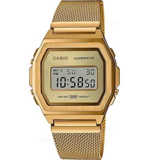 Casio Collection A1000MG-9E