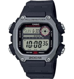 Мужские Casio Collection  DW-291H-1A