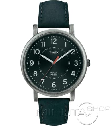Timex T2P219